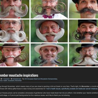 33 Movember moustache inspirations